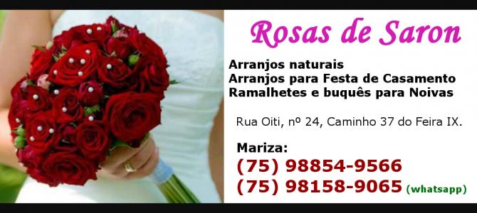 Rosas de Saron – Flores e arranjos em geral!